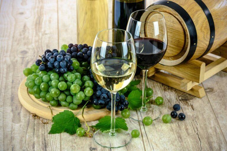 Quali sono gli strumenti necessari per fare il vino?
